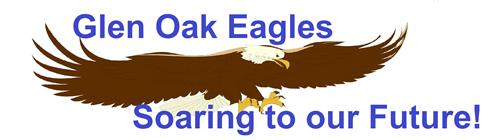 Eagles soaring